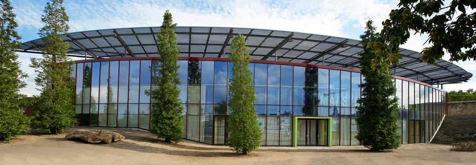 maastricht music hall