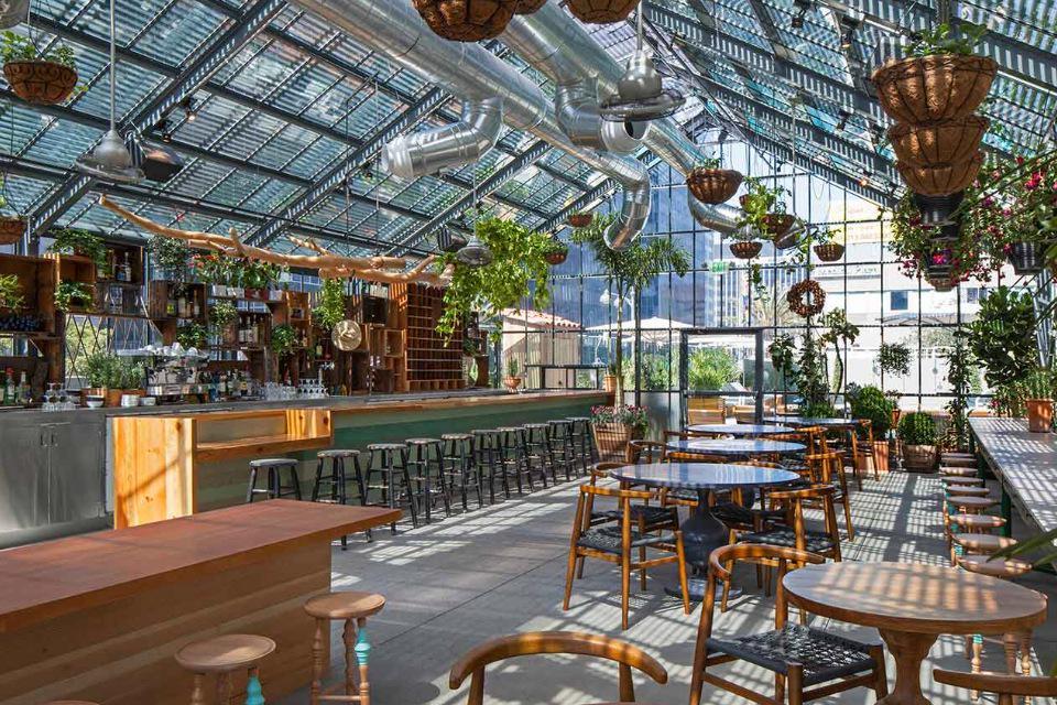 Dedakkas Haarlem Opent In 2018 Greatervenues Com